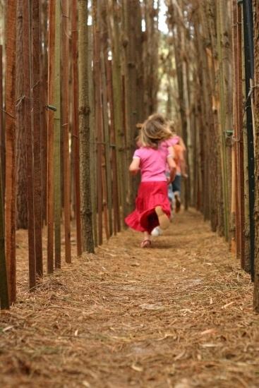 The Maze family playground - Bullsbrook WA