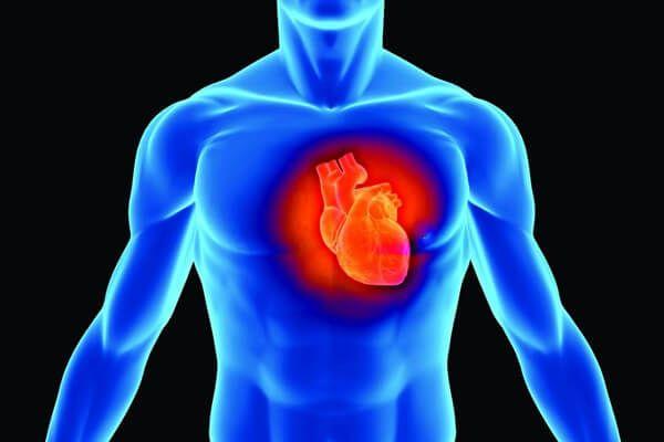 http://costaldemusculos.com/como-limpiar-las-arterias-del-corazon-naturalmente/ - CoMo LimpiAr Las ArTeRiAs DeL CoRazÓn NaTuralMenTe