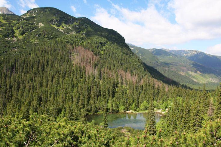 West Tatras - Roháče - Ťatliakovo jazero