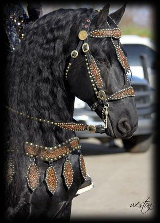 Medieval Bridle Sets | Costuming | Horses, Medieval horse ...