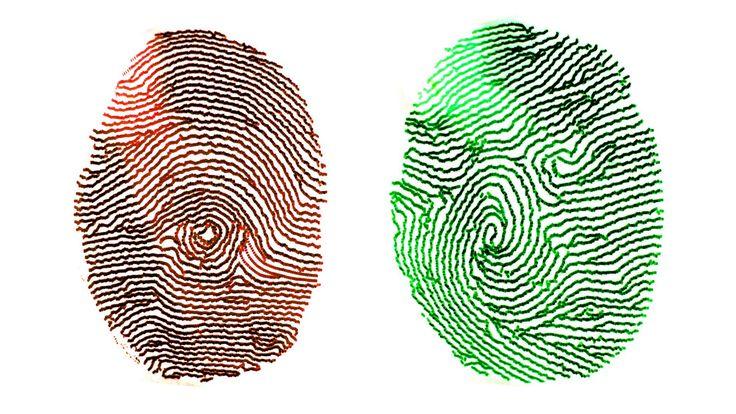Domino finger print scanner