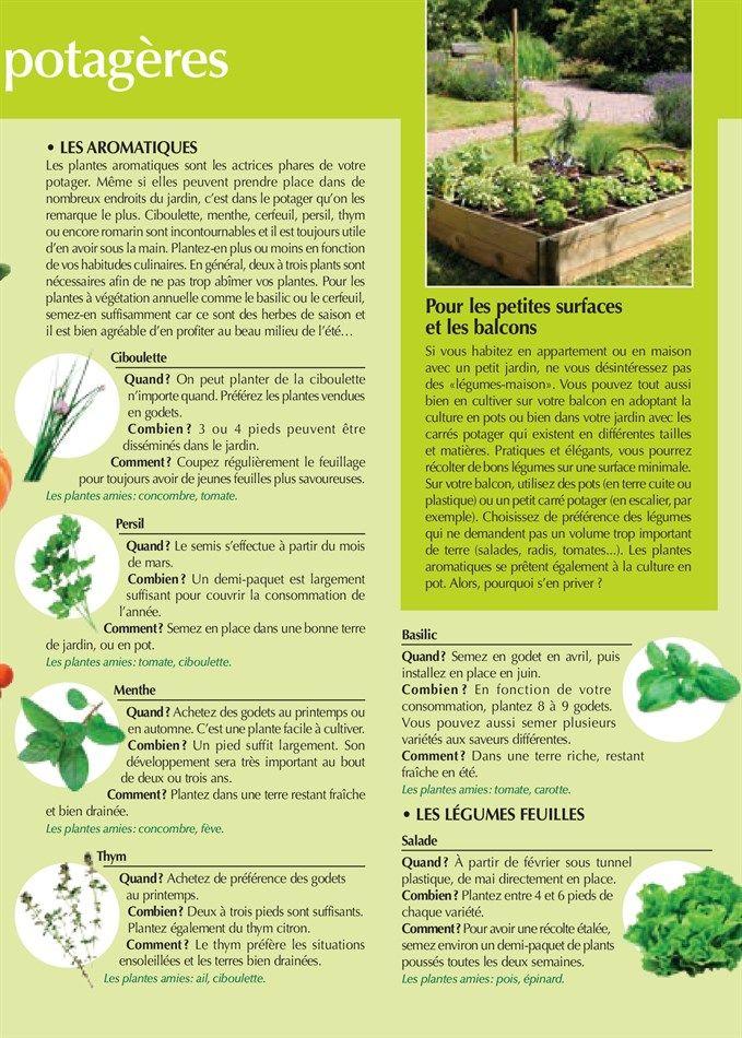 Best 25+ Magasin vert ideas on Pinterest   Découpages papier ...