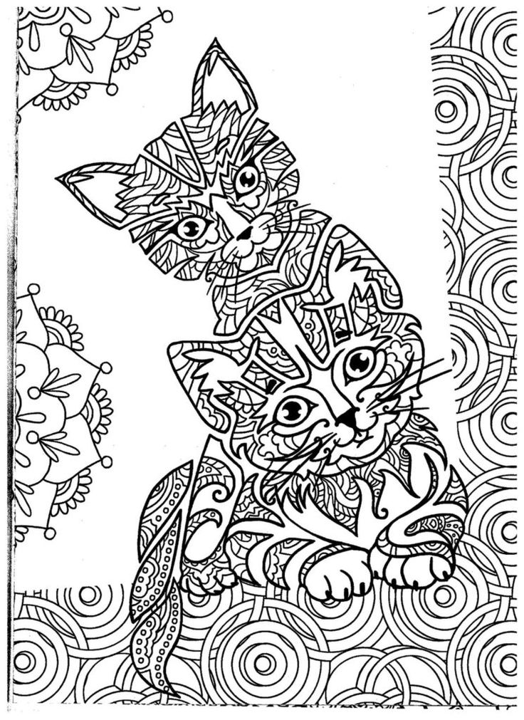 Cat Coloring Pages Cat coloring page, Animal coloring