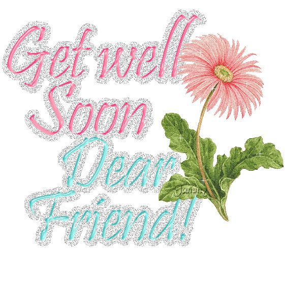 Get Well Soon My Sister Quotes: Best 25+ Get Well Soon Flowers Ideas On Pinterest