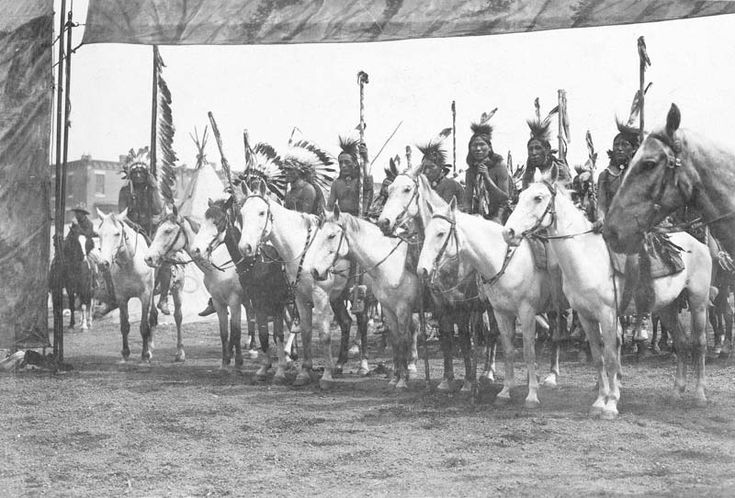 a history of horses in the american wild west Horses and field artillery  on the daily lives of frontier soldiers in the american west wild west  publisher of history magazines historynetcom.