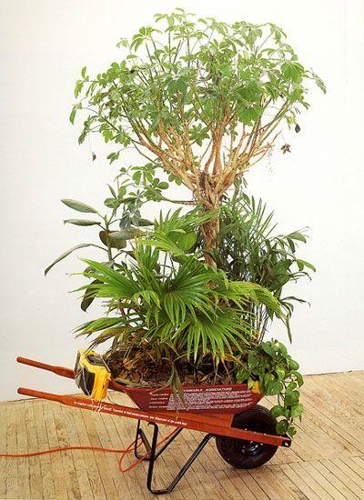 Mark Dion & William Schefferine, 'Wheelbarrows of progress: Tropical Rainforest Preserves (mobile version)' (1990)