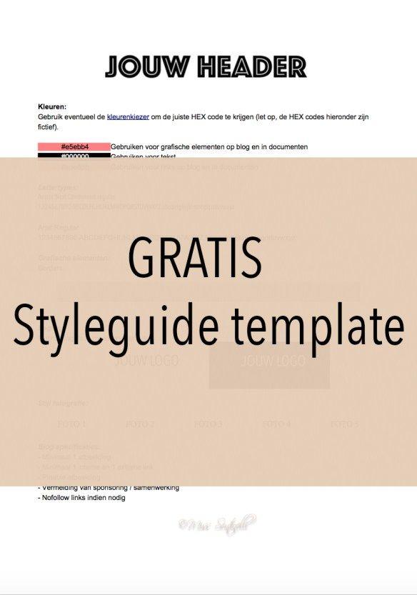 Hoe maak je een styleguide voor jouw blog, website en/of bedrijf? Een styleguide is een document dat alle lettertypes, kleuren, ontwerpelementen, regels en richtlijnen van jouw merk (blog/bedrijf) bevat. In dit artikel laat ik zien hoe je een styleguide maakt en waarom je er één nodig hebt. En daarnaast heb ik voor jullie een GRATIS Styleguide template.