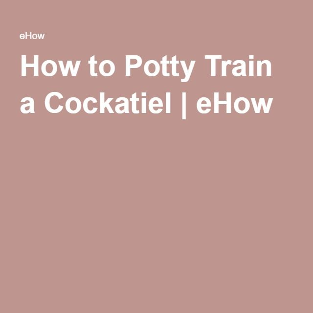 How to Potty Train a Cockatiel | eHow