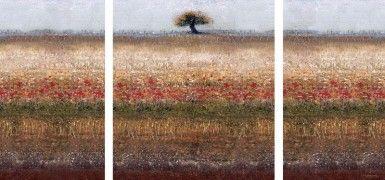 ΕΛΑΙΟΤΥΠΙΑ LONELY TREE