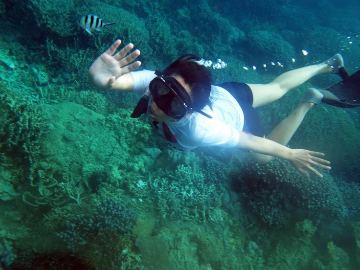 Give me five, fish! Dive while Snorkeling at Karimunjawa, Central Java, Indonesia.