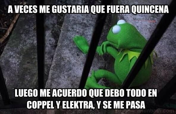 Frase De Memes: 17 Geniales Frases Y Memes De La Rana René