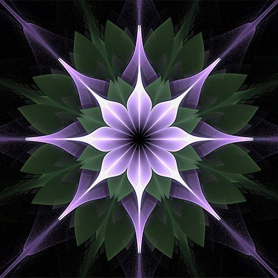 Plaid Mandala by Barbara A Lane, Digital Artist #