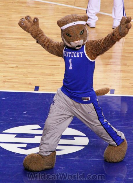 Kentucky Wildcats Basketball Mascot   you might also like these posts teenage son of former cat leroy byrd ...