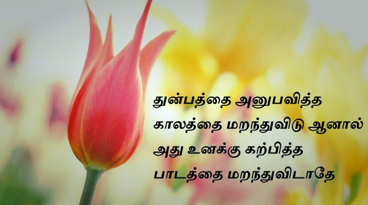 I Hate My Mom Poem: 88 Best Tamil Quotes Images On Pinterest