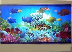 Waterless Aquariums Animated Fish Tank Dream Stuff