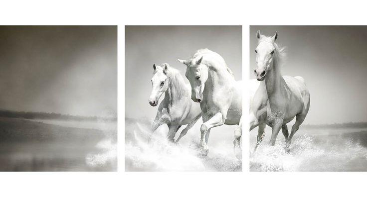 Λευκά Άλογα