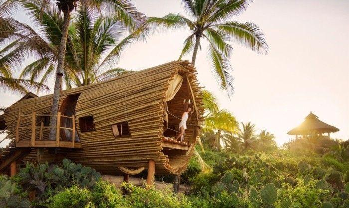 #интересное  Райское место для отдыха: бамбуковый дом на дереве (6 фото)   На живописном участке недалеко от Акапулько (Мексика) находится потрясающий отель, полностью выполненный из бамбука. Эта экзотическая структура – настоящий дом на дереве. Он расположен ме