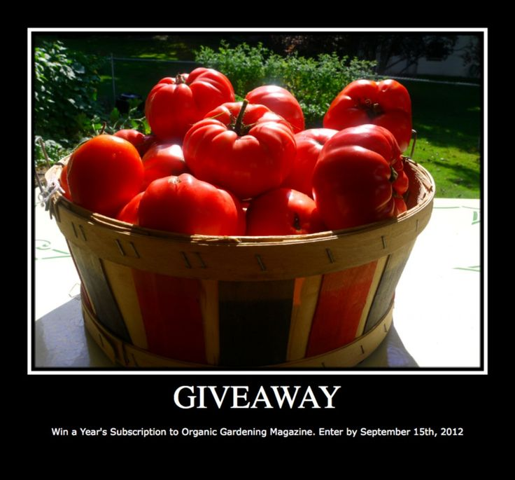 Organic Gardening Magazine Giveaway - you could win a free one year's subscription!