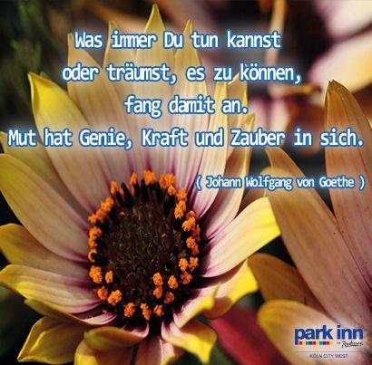 Wir wünschen Euch einen entspannten und sonnenreichen Tag der Deutsche Wiedervereinigung !  We wish you a relaxing and sun-filled day of German reunification!  #Emotions #Deutschewiedervereinigung #ParkInnKoeln #ProventHotels