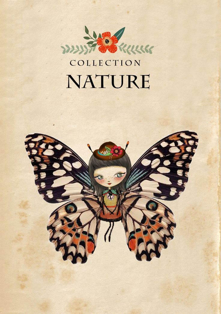 Colección Nature. #butterfly #nature #laliblue