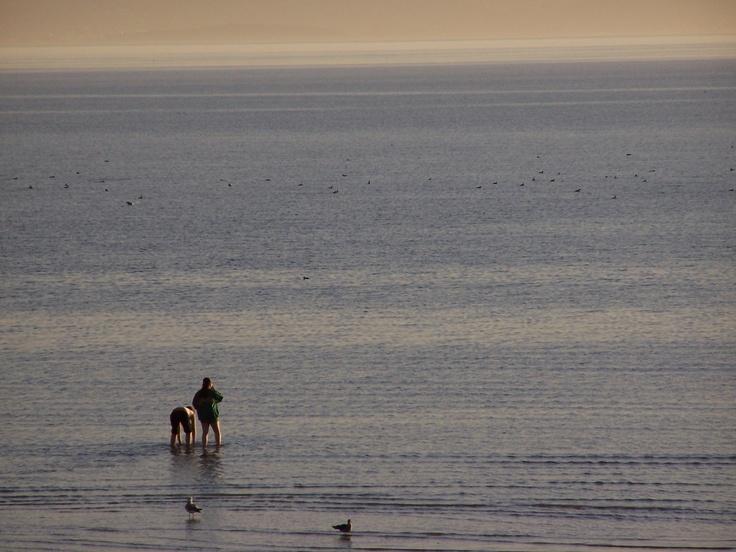 Alameda Beach dusk...