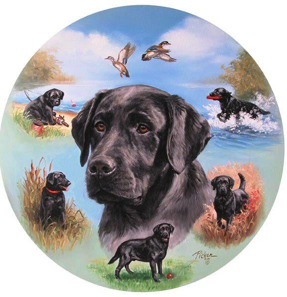 рисовая круглые картинки собак статья будет полезна