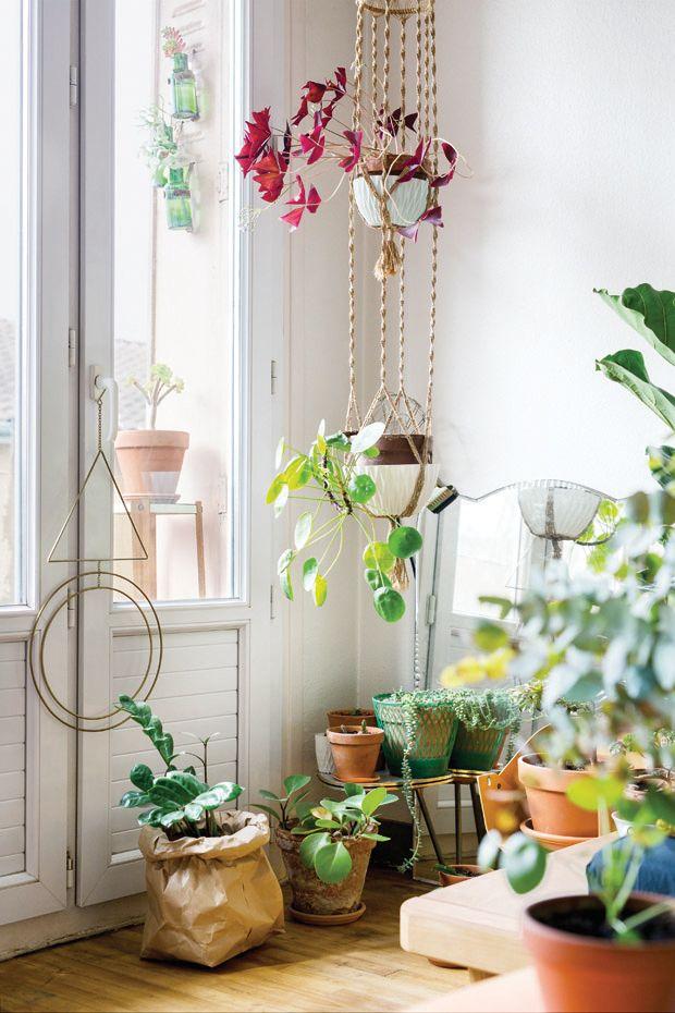 Boho urban jungle met macramé plantenhangers en openslaande deuren