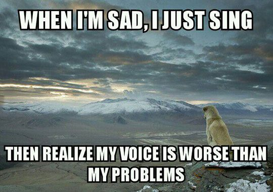 Sing A Song, They Said