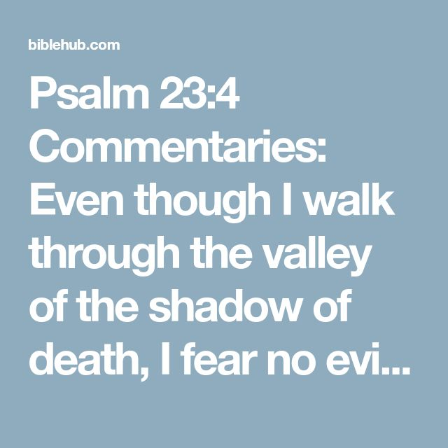 Psalm 23:4 Commentaries: Even though I walk through the valley of the shadow of death, I fear no evil, for You are with me; Your rod and Your staff, they comfort me.