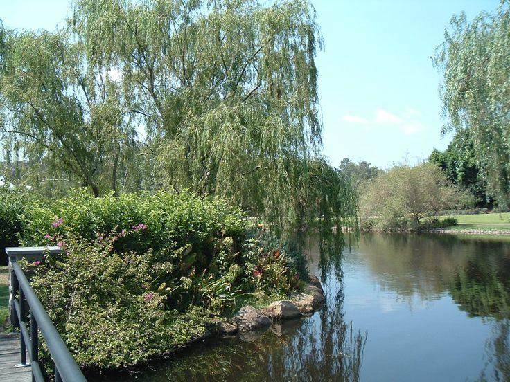 Hunter Valley botanical Gardens