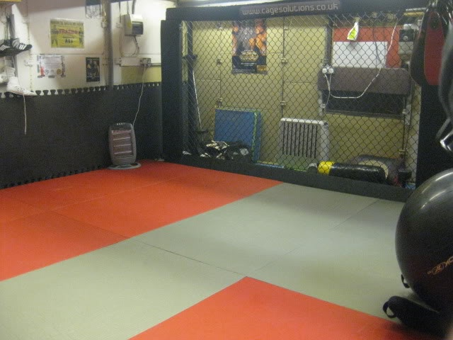 Garage gym setup with mma cage home weight room for Small room gym setup