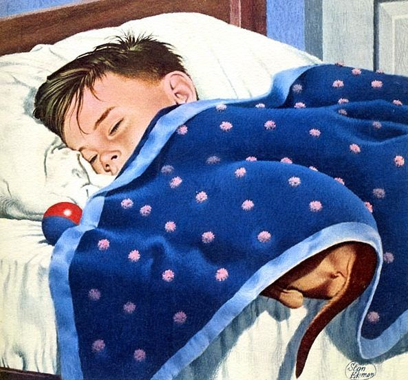 Dachshund Under the Covers (October 5, 1958) by Stan Ekman for American Weekly Magazine cover
