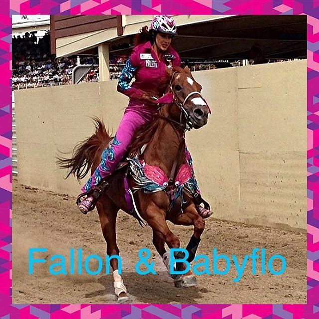 19 Best Calgary Stampede Images On Pinterest Horses