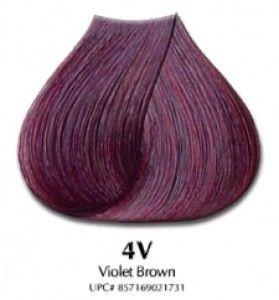 Satin Hair Color Violet Brown 4V