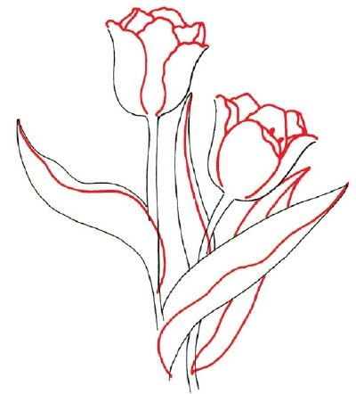 draw flowers | how-to-draw-flowers-and-plants-28.jpg