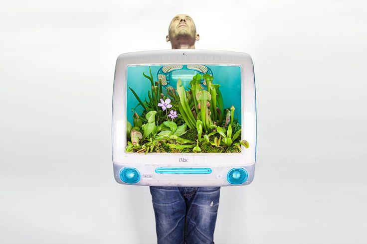 """Eski 'Mac'ler saksı oldu!  Fransız sanatçı Christophe Guinet çalışmalarında bitkileri kullanıyor. Kendini de """"Monsieur Plant"""" yani """"Bay Bitki"""" olarak tanıtıyor. Doğaya dönüş temasını işlediği eserlerinde atıklara gönderme yaparak aşırı tüketimi protesto ediyor.   #Bitkiler #Dekorasyon #Ekoloji #Proje #SürdürülebilirÇevre #Yeşil #Mac #Apple"""