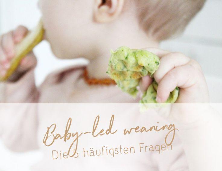 Baby-led weaning - Die wichtigsten Fragen