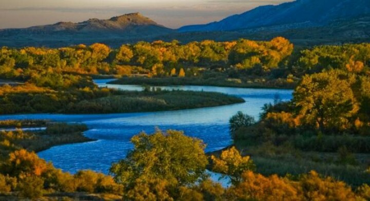 Beautiful Colorado riverColors Colorado, Colorado River, Fall Colors, Foliage Drive, Colors Drive, Colorado Com, Fall Foliage, Colorado Vacations, Colorado Fall