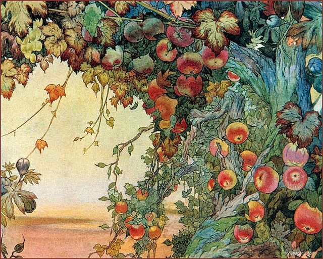 'The Fruits of the Earth' (1911) by Edward J. Detmold' by Plum leaves, via Flickr