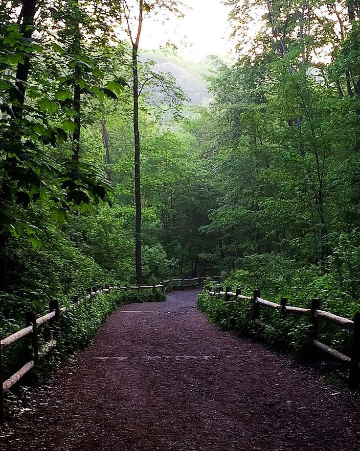 The top 10 walking trails in Toronto