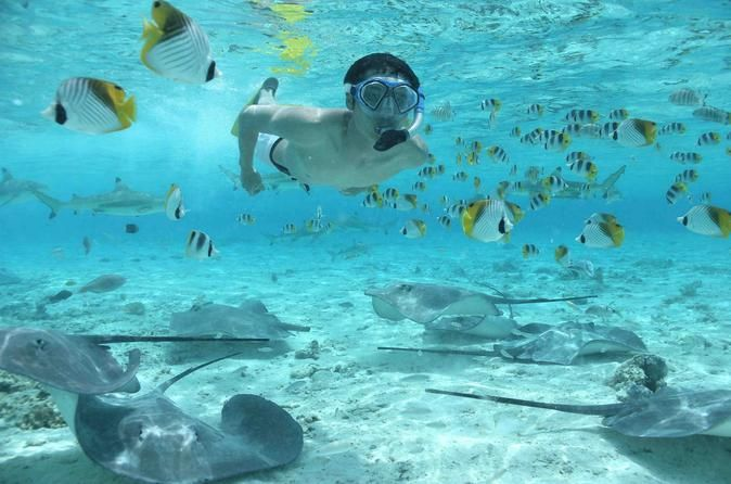 You cannot go to Bora Bora and not be on or in the beautiful clear blue water. Let's take a look and some wonderful things to do in Bora Bora.Let's go under th