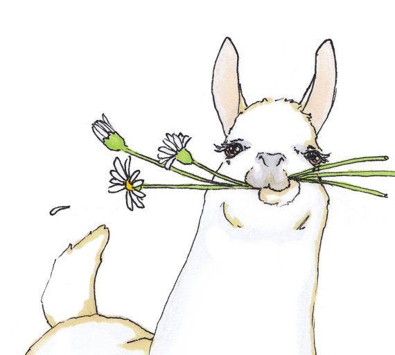 Quirky Llama or alpaca Nursery Wall Art an Original Print Ilustration in White