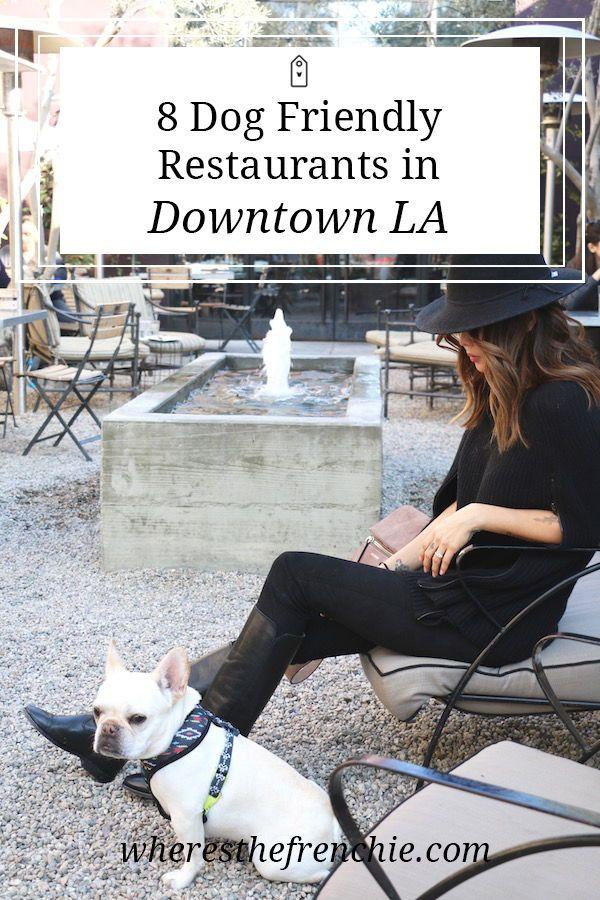 8 Dog Friendly Restaurants In Dtla Dog Friends Dog Friendly