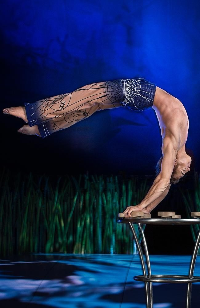 Perfect performances ... Cirque du Soleil's TOTEM will not disappoint. Picture: OSA Image