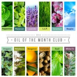 Spark Naturals Oil of the Month Club - Great way to build your essential oil supply at an affordable price.  $15.99/month + free shipping for a 15 ml essential oil!