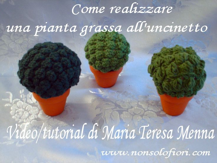 Pianta grassa all'uncinetto Succulent plant - Video/tutorial - www.nonsolofiori.com