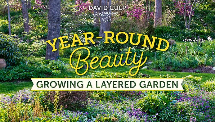 About Lovely Things Like Landscaping, Pretty Gardens, Roses and More!