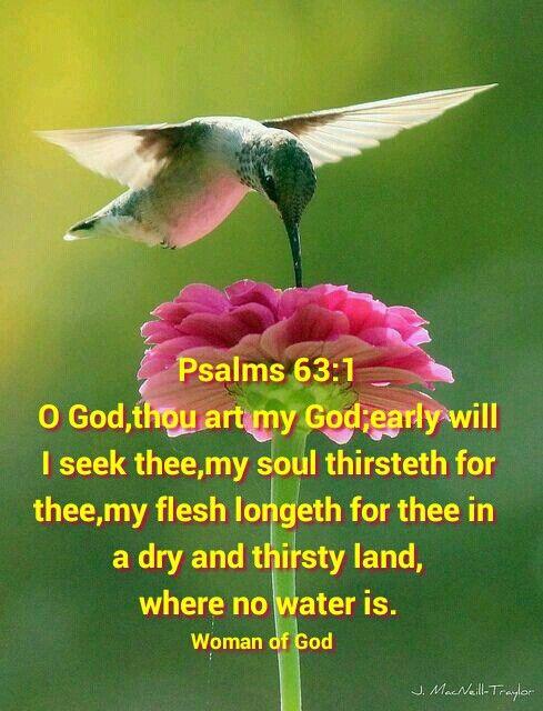 Psalms 63:1 KJV