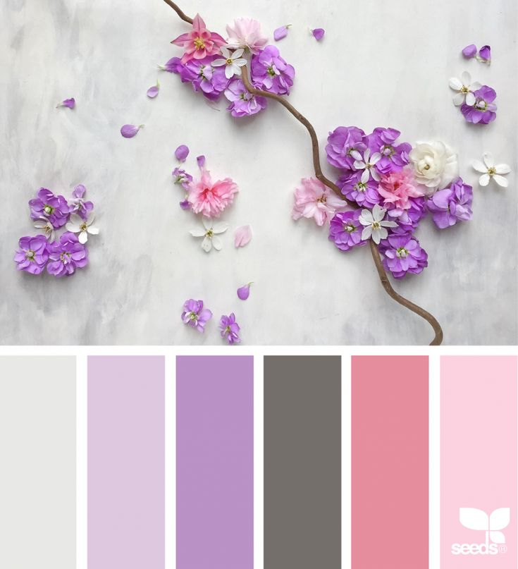 4209 best c o l o r s images on pinterest color palettes Good color combination for pink