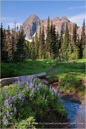 Three Fingered Jack, Mt. Jefferson Wilderness, Oregon.